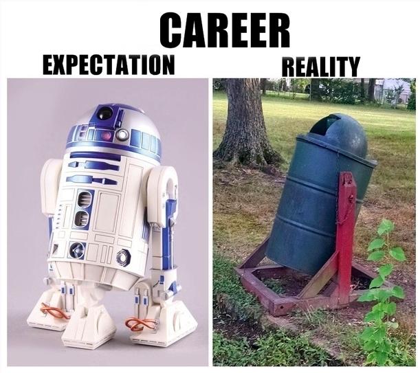 employment expactations reality meme