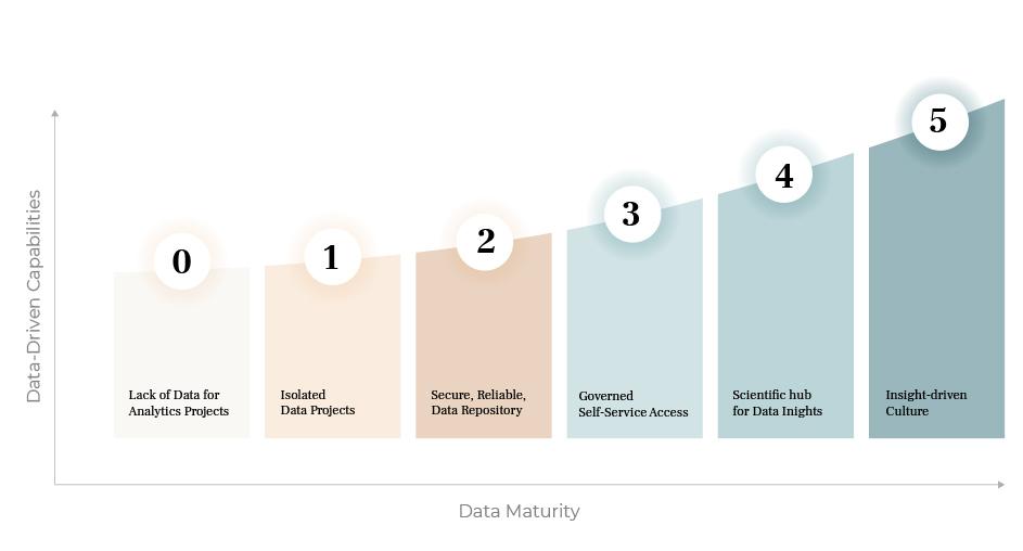 data maturity model organization